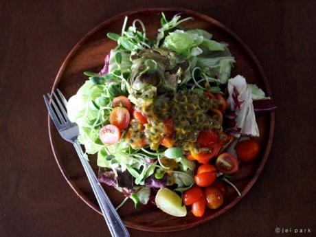 Making Organic Salad in Chiang Mai