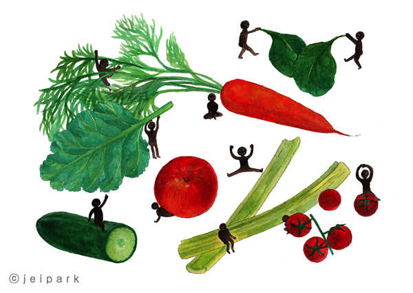 Cooking Ingredient Illustration
